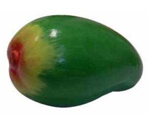 Fruit Shaker Mango